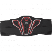 Fox Youth Titan Sport Kidney Belt Black
